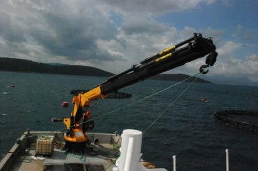 Marine Uygulamaları Marine Uygulamaları                                                      1