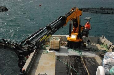 Marine Uygulamaları Marine Uygulamaları                                                      2